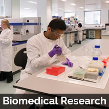 Bio Medical Research